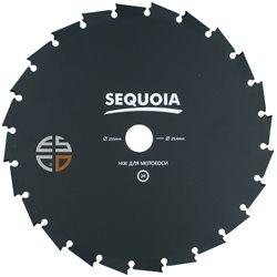 Нож SEQUOIA GB24-255
